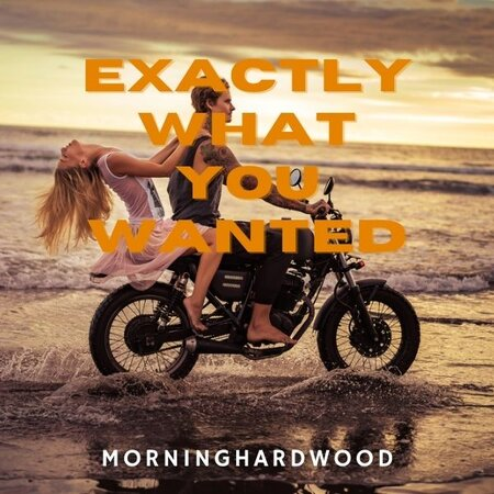 Exactly What You Wanted cover image