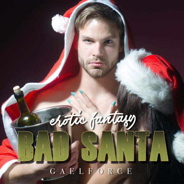 Bad Santa cover image
