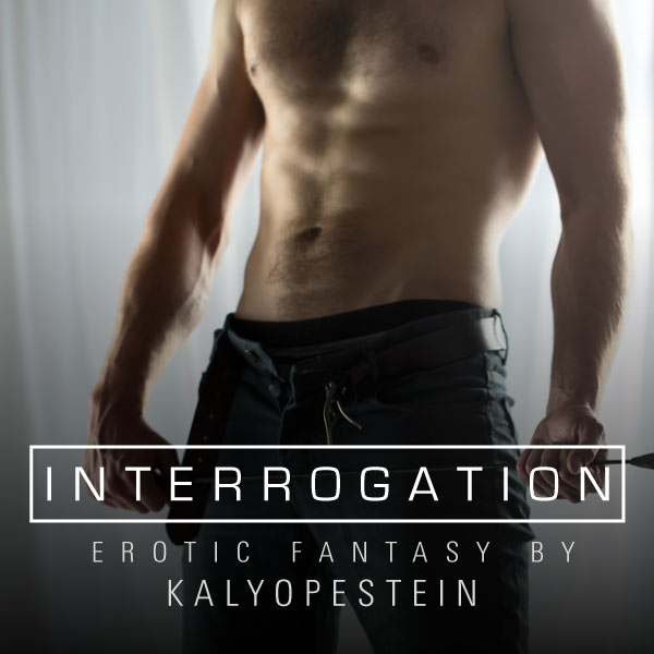 Interrogation cover image
