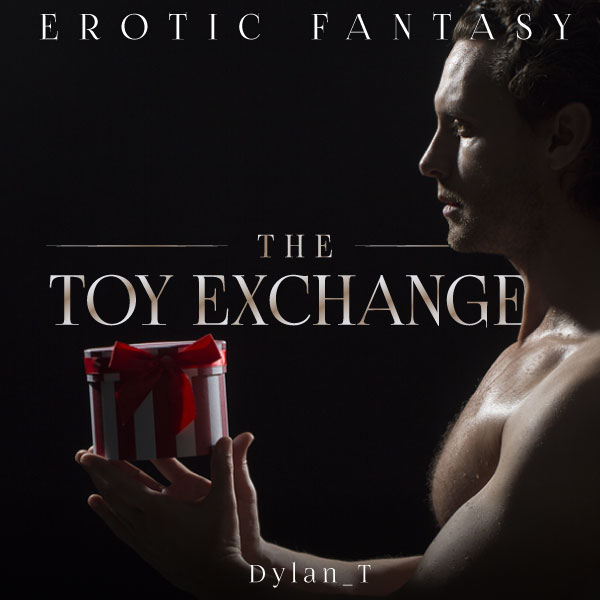 The Toy Exchange cover image