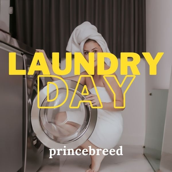 Laundry Day cover image