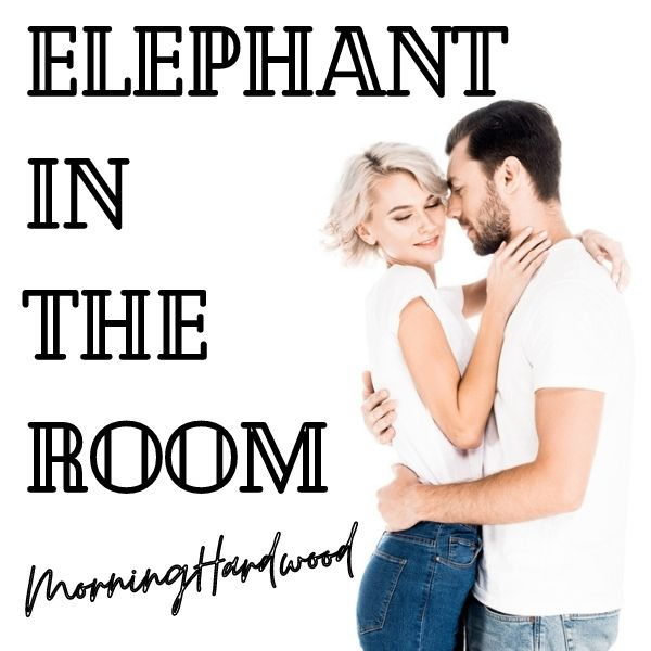 Elephant In The Room  cover image