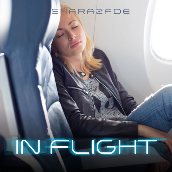 In Flight cover image