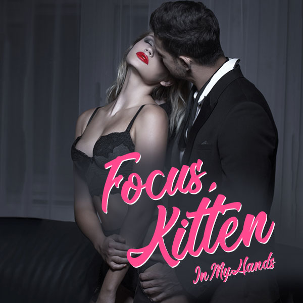 Focus, Kitten cover image