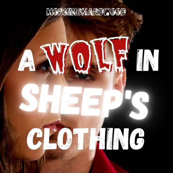 A Wolf In Sheep's Clothing cover image