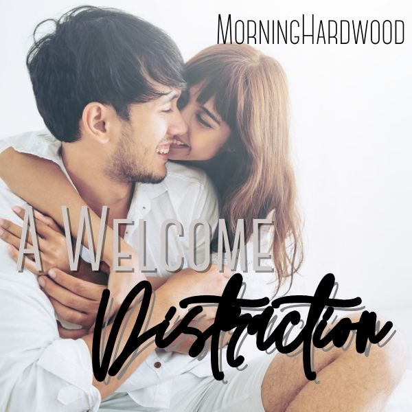 A Welcome Distraction cover image
