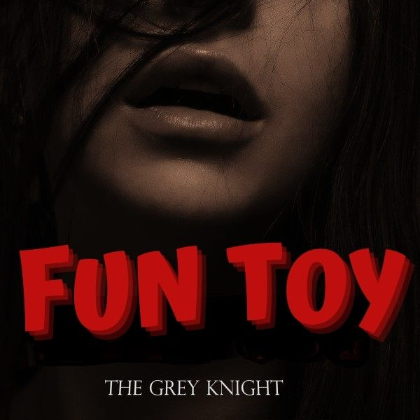 Fun Toy cover image