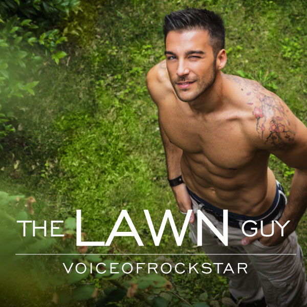 The Lawn Guy cover image