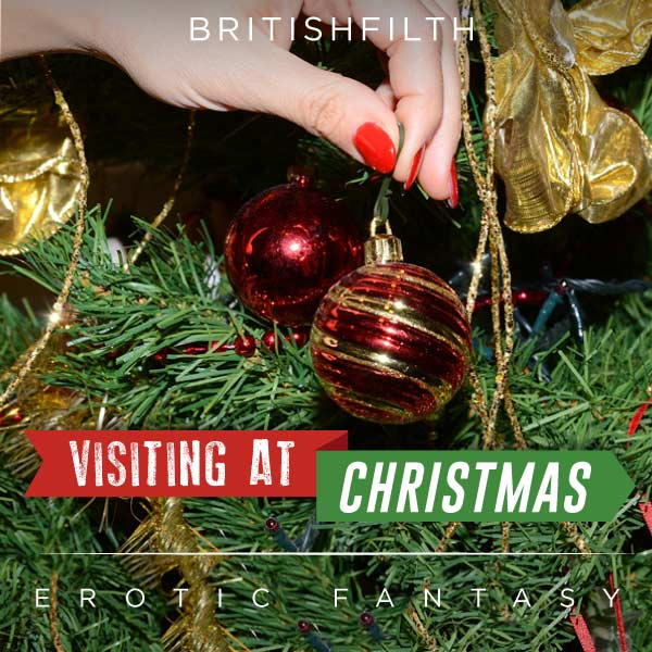 Visiting at Christmas cover image