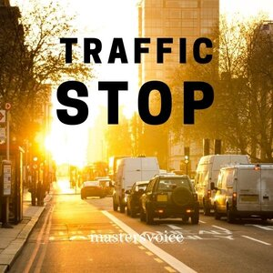 Traffic Stop cover image